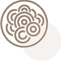 ICONE_su-bianco_cucina